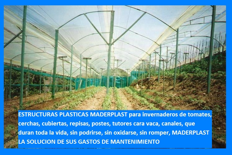 40 cultivos tecnificados invernaderos agricultura cosecha for Diferentes tipos de viveros